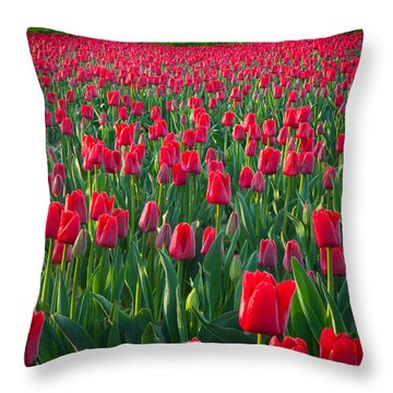 Sea Of Red Tulips Throw Pillow