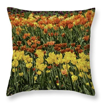 Sea Of Tulips Throw Pillow by LeeAnn McLaneGoetz McLaneGoetzStudioLLCcom