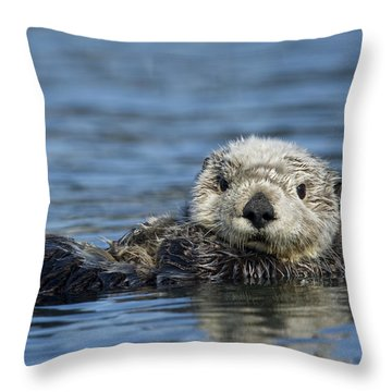 Throw Pillow featuring the photograph Sea Otter Alaska by Michael Quinton