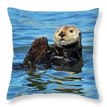 Throw Pillow featuring the photograph Sea Otter Primping by Susan Wiedmann