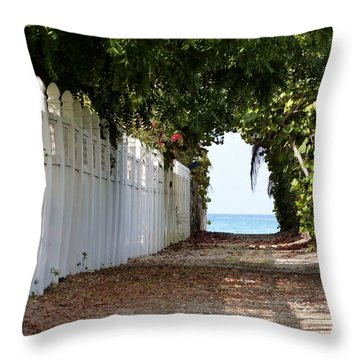 Passage To Sea Throw Pillow by Amar Sheow