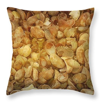 Seashells Red River Beach Harwich Cape Cod Ma Throw Pillow by Suzanne Powers