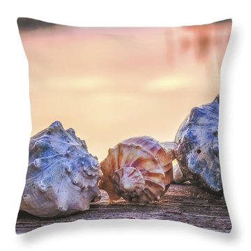 Throw Pillow featuring the photograph Sea Shells Image Art by Jo Ann Tomaselli