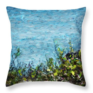 Throw Pillow featuring the digital art Sea Shore 1 by David Lane