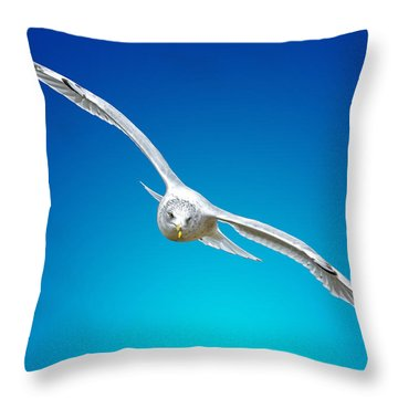 Throw Pillow featuring the photograph Sea Soar by Brian Stevens