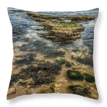 Sea Through Throw Pillow by Svetlana Sewell