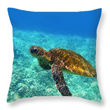 Sea Turtle Close Up Throw Pillow by Bette Phelan