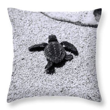 Throw Pillow featuring the photograph Sea Turtle by Sebastian Musial