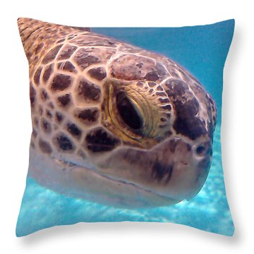 Sea Turtle Throw Pillow by Thomas OGrady