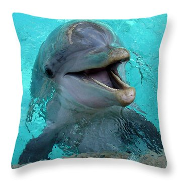 Throw Pillow featuring the photograph Sea World Dolphin by David Nicholls