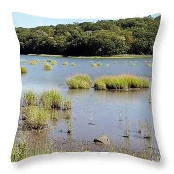Throw Pillow featuring the photograph Seagrass by Ed Weidman