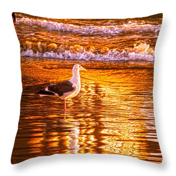 Seagul Reflects On A Golden Molten Shore Throw Pillow