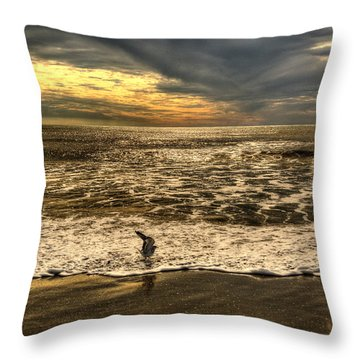 Throw Pillow featuring the photograph Seagull Sunset Bath by Julis Simo