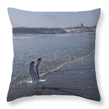 Throw Pillow featuring the photograph Seagull 1 by Robert Nickologianis
