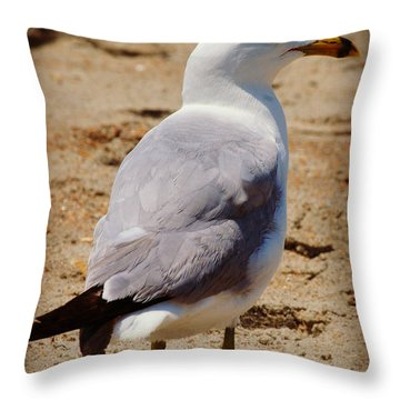 Seagull 3 Series 2 Throw Pillow by Kelly Nowak