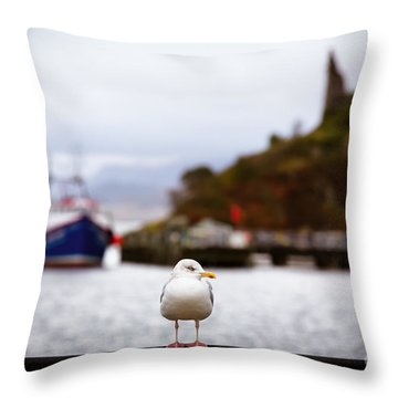 Seagull At Moil Castle Throw Pillow