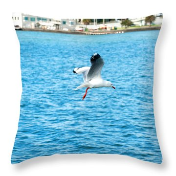 Seagull At St Kilda Throw Pillow by Yew Kwang