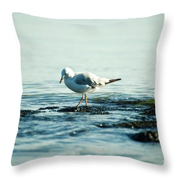 Seagull Hunting Throw Pillow by Yew Kwang
