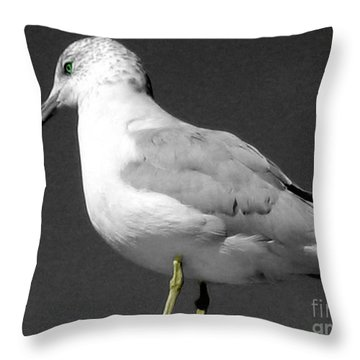 Throw Pillow featuring the photograph Seagull In Black And White by Nina Silver