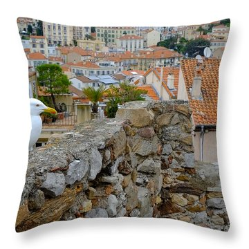 Seagull In Cannes Old City Throw Pillow