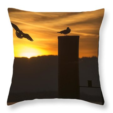Throw Pillow featuring the photograph Seagull In The Sunset by Chevy Fleet