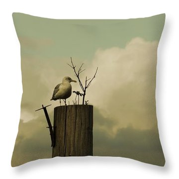 Throw Pillow featuring the photograph Seagull Lookout by Patricia Strand