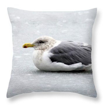 Throw Pillow featuring the photograph Seagull On Ice by Aaron Berg