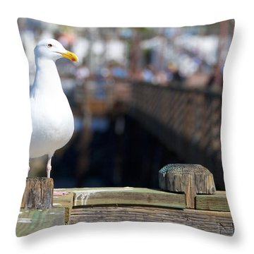 Throw Pillow featuring the photograph Seagull by Robert  Aycock