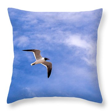 Throw Pillow featuring the photograph Seagull by Sennie Pierson