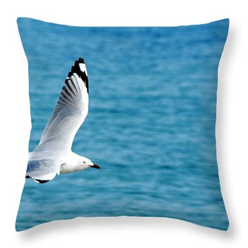 Seagull Throw Pillow by Yew Kwang