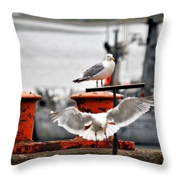 Seagulls Expression Throw Pillow by Debra  Miller