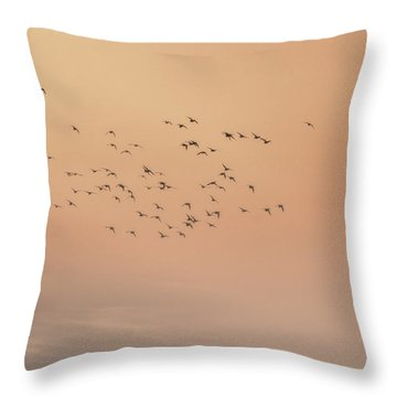 Throw Pillow featuring the photograph Seagulls In The Mist by Beth Sawickie