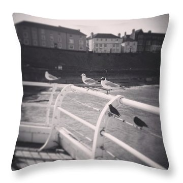 Seagulls Of The East Coast Cromer Norfolk England Throw Pillow