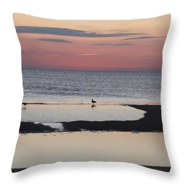 Throw Pillow featuring the photograph Seagulls On The Seashore by Robert Banach