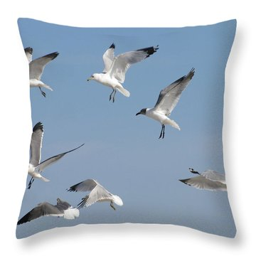 Seagulls See A Cracker Throw Pillow by Ellen Meakin