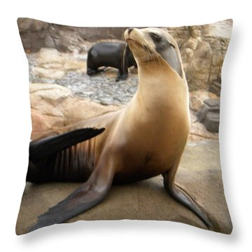 Seal In The Spotlight Throw Pillow