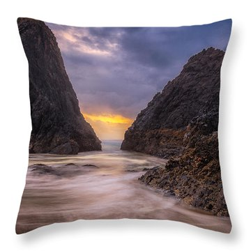 Seal Rock 2 Throw Pillow by Jacqui Boonstra