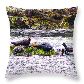 Seals Resting Throw Pillow by Robert Bales