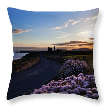 Seapink Lining The Country Road Throw Pillow