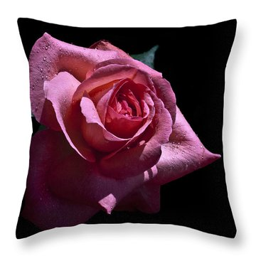 Throw Pillow featuring the photograph Searching by Doug Norkum