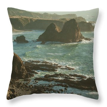Seascape  1.7107 Throw Pillow