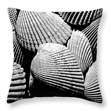 Throw Pillow featuring the photograph Seashell Abstract by Mary Bedy