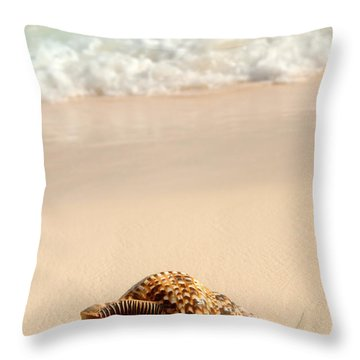 Designs Similar to Seashell And Ocean Wave