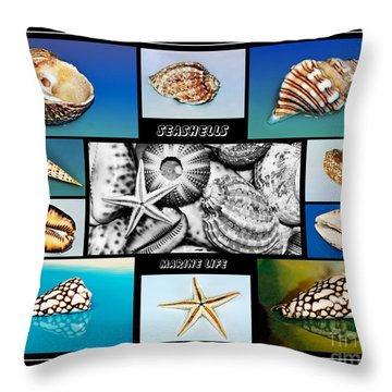 Seashell Collection Throw Pillow by Kaye Menner