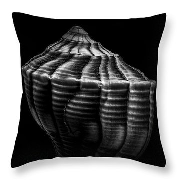 Seashell On Black Throw Pillow by Bob Orsillo