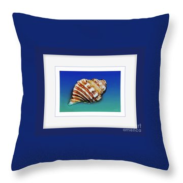 Seashell Wall Art 1 - Blue Frame Throw Pillow by Kaye Menner