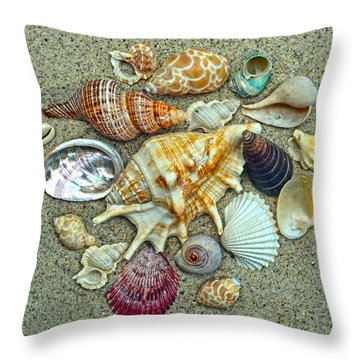 Seashells Collection Throw Pillow