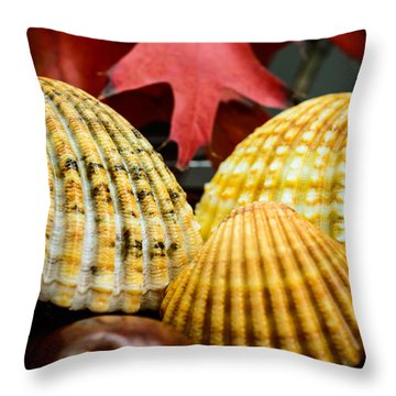 Seashells II Throw Pillow by Marco Oliveira