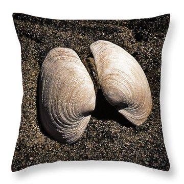 Seashells Throw Pillow by Richard Farrington