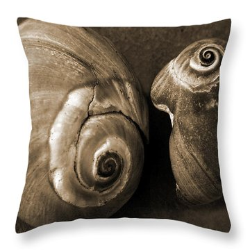 Seashells Spectacular No 6 Throw Pillow